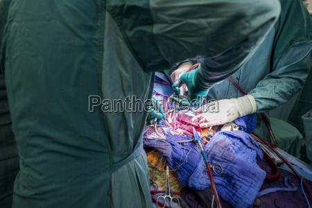 arzt mediziner medikus menschen leute personen