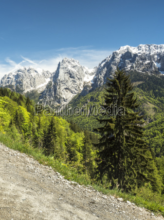 fahrt reisen baum feldweg wolke alpen