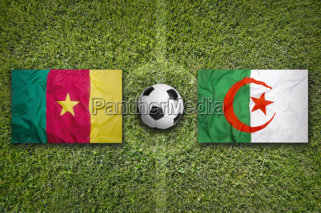 kamerun vs algerien fliegt auf fussballplatz