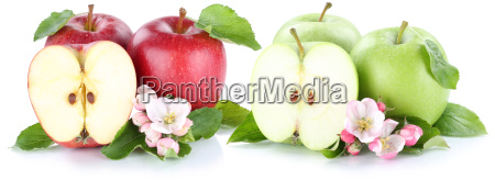 apple fruit apples fresh fruit fruit