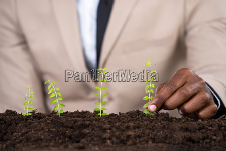 persons hand planting small plant
