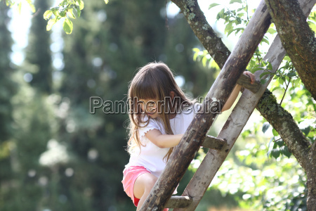 girl climbing ladder against tree