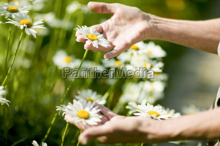 senior woman touching wildflowers