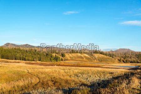 pelican valley landscape at yellowstone