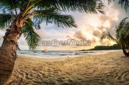 tropical beach at sunset a paradise