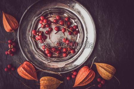 red berries in the vintage metal