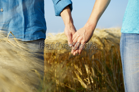 couple holding hands in a wheat