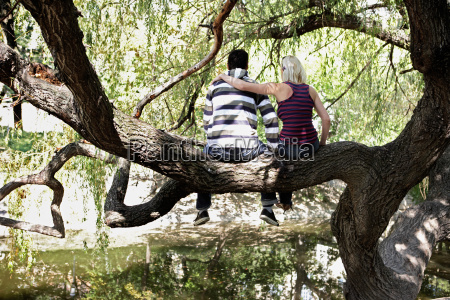 couple sitting in a tree by