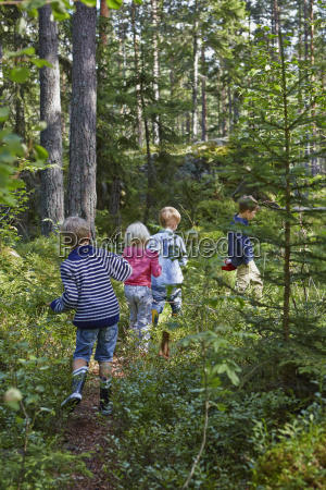 four young children wandering in forest