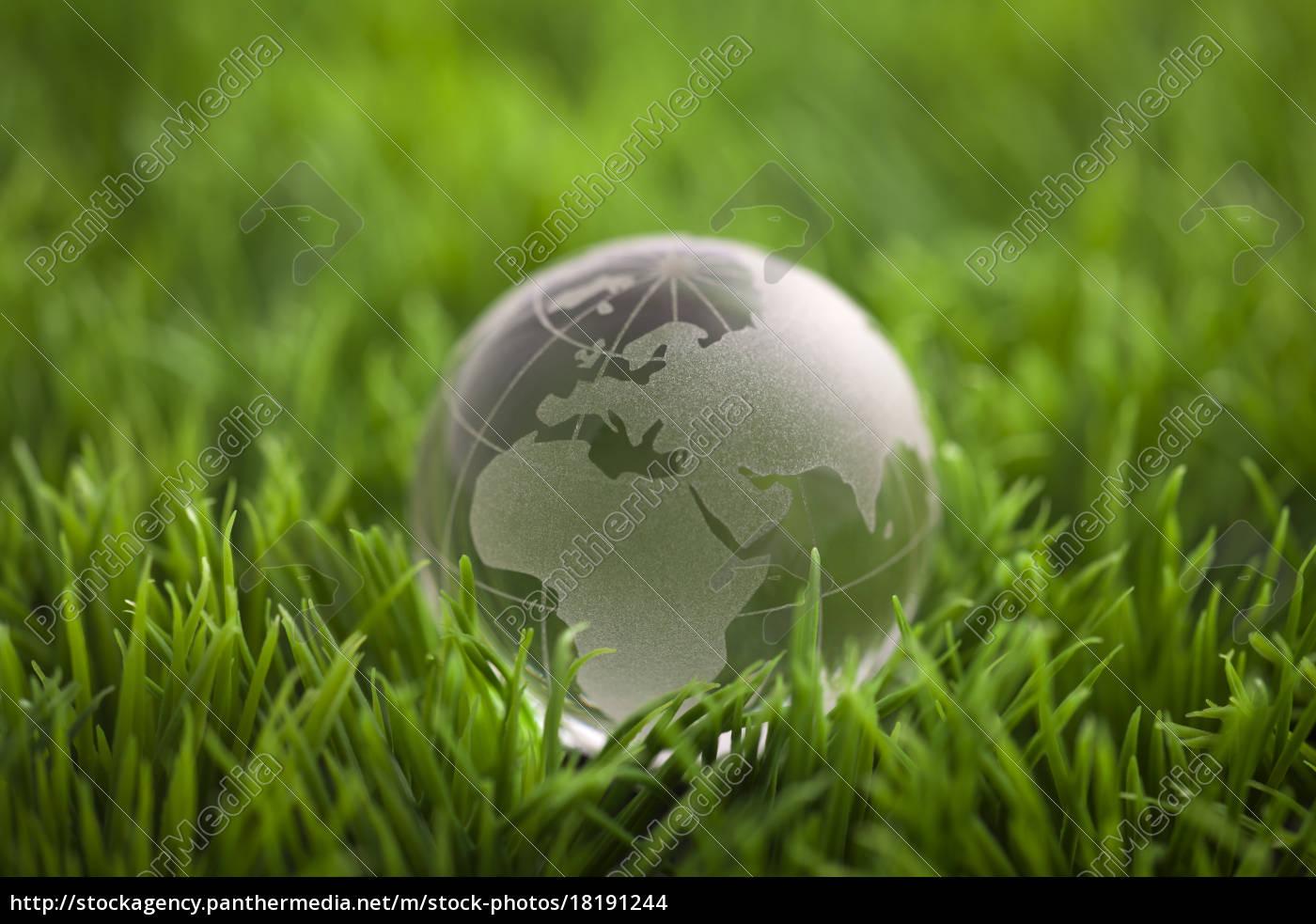 kristallkugel, auf, grünem, gras., weltumweltkonzept. - 18191244