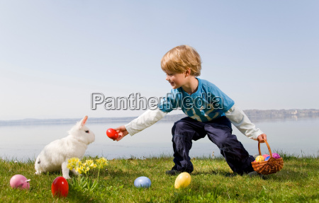 boy bunny finding easter eggs