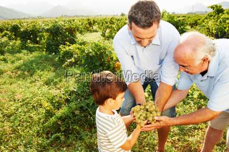 generational family holding grapes