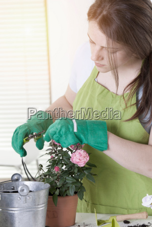 woman pruning potted plants indoors