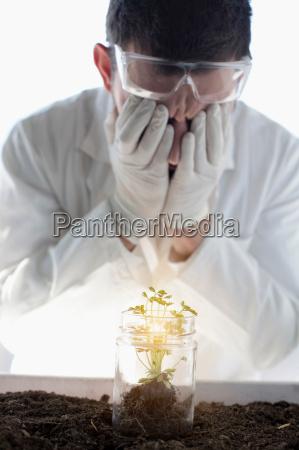 scientist examining glowing plant in jar