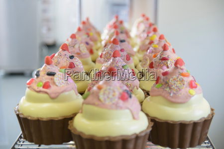 large chocolate cup cakes arranged on