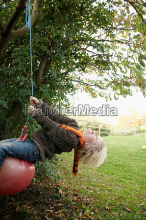 young boy on tree swing