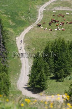 aerial view of bikers on rural