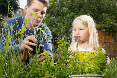 father and daughter gardening