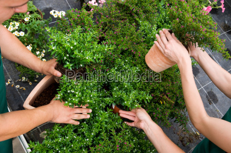 two women man caring for plants
