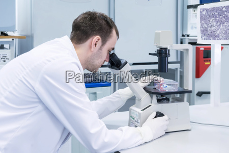 wissenschaft forschung befoerderung zukunft maennlich mannhaft