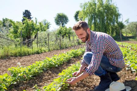 landwirtschaft sommer sommerlich toskana outdoor freiluft