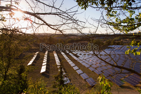 aerial view of field of solar
