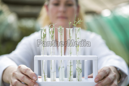 female scientist holding up plant samples