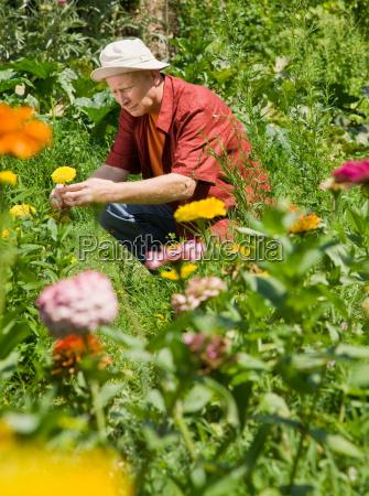 man pruning his garden