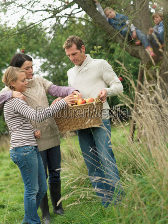 people looking at apple basket