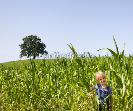boy playing in corn field