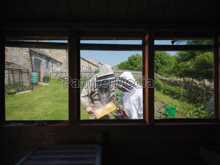 garten risiko fenster luke glasfenster fensterscheibe