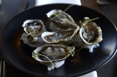 still life gourmet food plate of