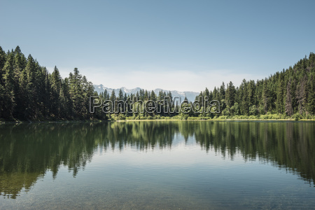 view of lake and forests british