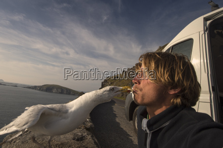 bird taking food from mans mouth