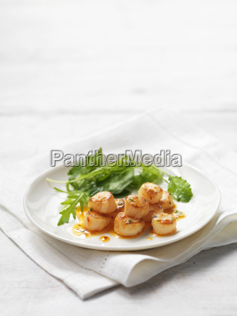 scallops with chilli and coriander served