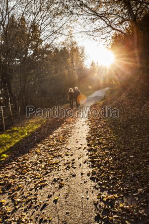 senior couple strolling along sunlit forest