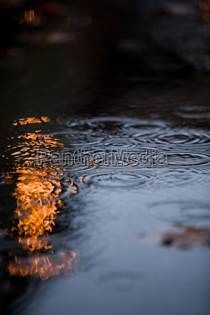reflection and ripples in water