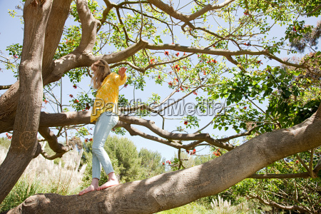 young woman in a tree