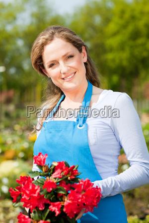 frau, hält, rote, blumen, porträt - 18678074