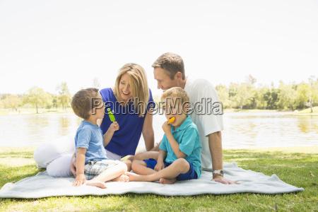 family of four on picnic blanket