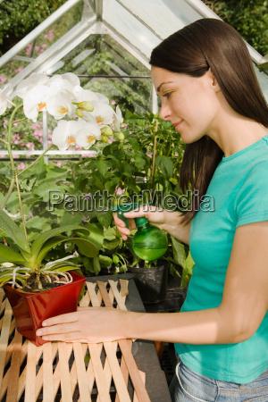 woman watering plants in greenhouse