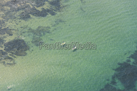 aerial view of two paddle boarders