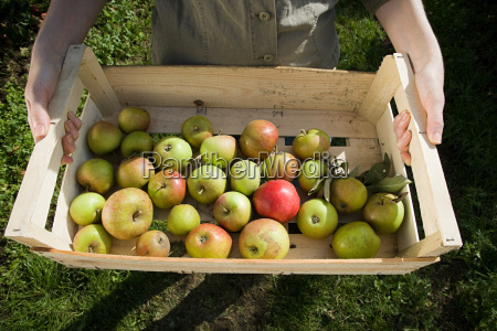 young woman holding crate of fresh