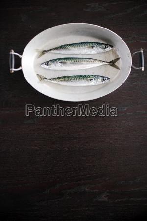 stilleben essen nahrungsmittel lebensmittel nahrung angeln