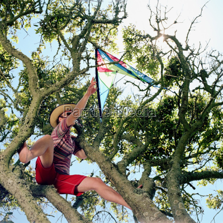 young man rescuing a kite from