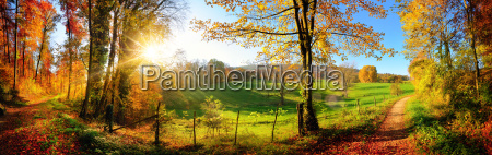 enchanting landscape in autumn sunny panorama