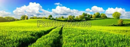 laendliche idylle panorama mit weiten gruenen