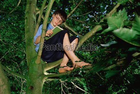 boy in a tree reading a