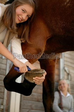 young woman cleaning horses hoof