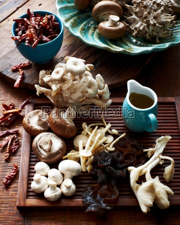 high angle view of various mushrooms